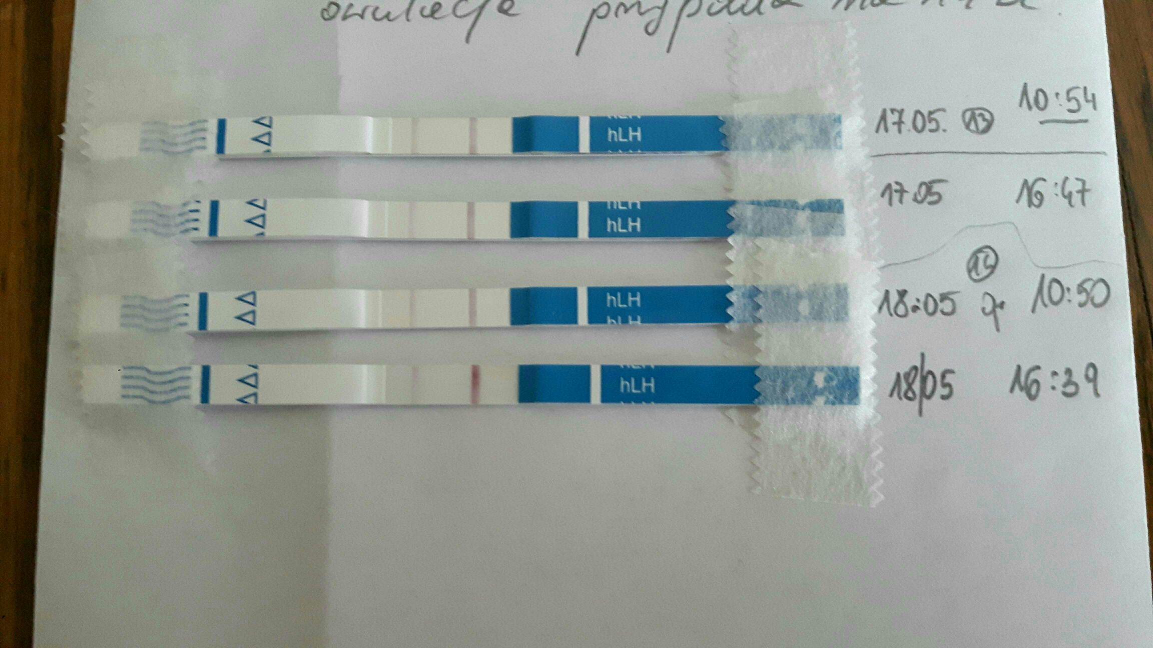 testy owulacyjne a owulacja